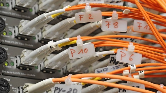 Netzwerkkabel an Internet-Servern