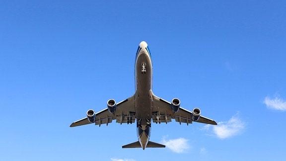 Ein Flugzeug im Landeanflug auf den Flughafen Frankfurt a.M.