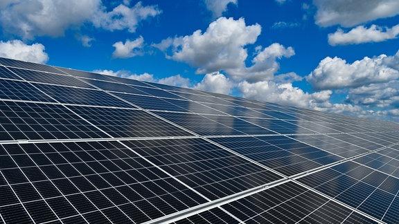 Der EnBW-Solarpark «Weesow-Willmersdorf» im Landkreis Barnim, östlich von Berlin.