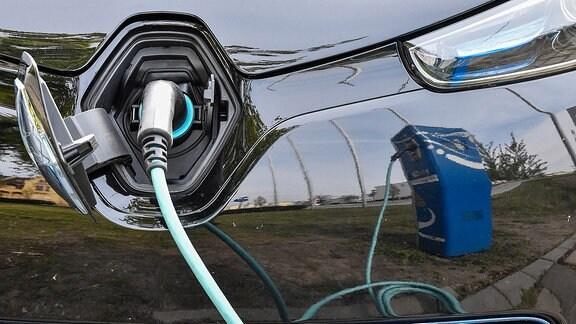 Ein Elektroauto vom Typ Renault Zoe wird an einer Ladesäule in Cottbus (Brandenburg) aufgeladen.
