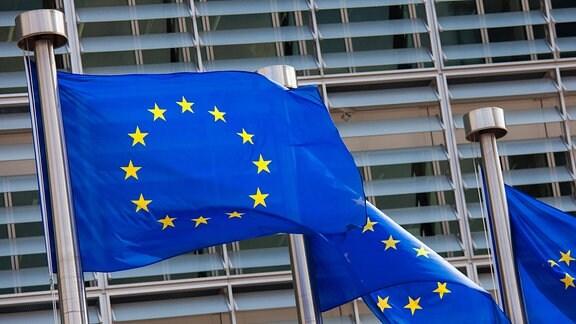 Eu-Flaggen an einem Mast