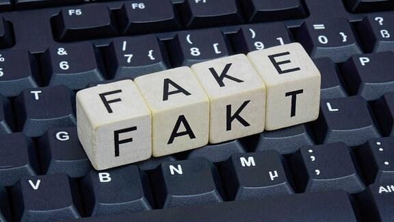 Fake und Fakt auf einer Tastatur