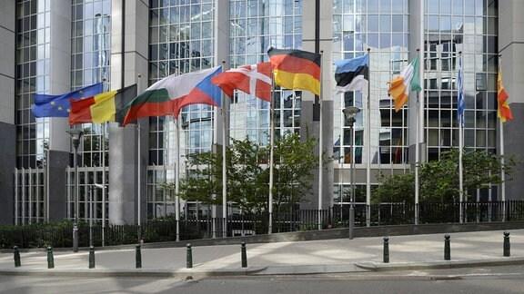 Nationalflaggen diverser Länder vor Europäischem Parlament