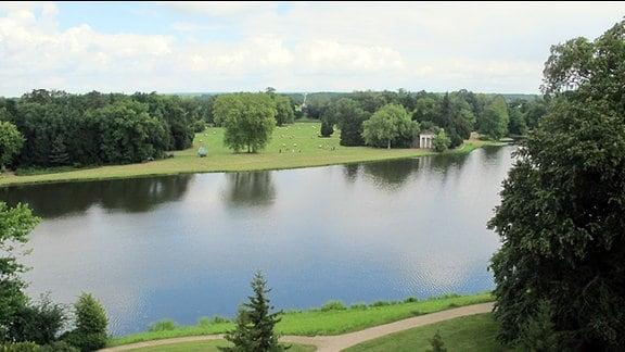 Eine der historischen Sichtachsen im Wörlitzer Park mit dem Wörlitzer See