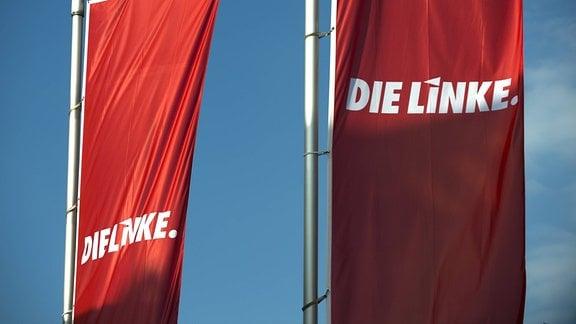 Linkspartei Fahne