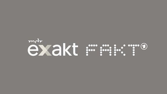 Logo Exakt & Fakt (MDR Investigativ) auf petrol-blauem Hintergrund