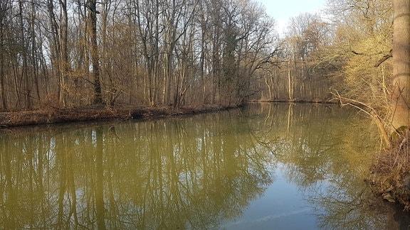 Fluss durch den Auwald in Leipzig.