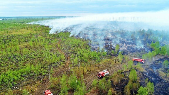 Ein Waldbrand wütet in einem Naturschutzgebiet im Bezirk Temnikovsky.