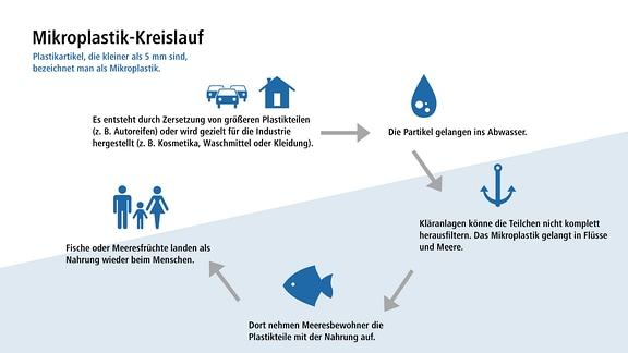 Grafik: Mikroplastik-Kreislauf