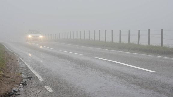 Auto mit Licht im dichten Nebel auf Straße