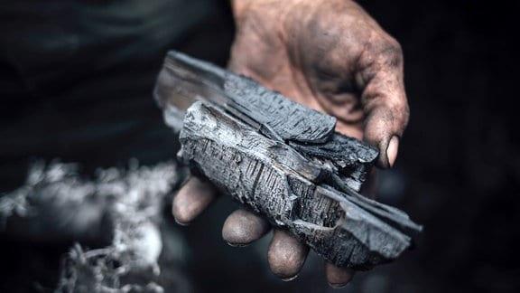 Holzkohle auf einer Hand