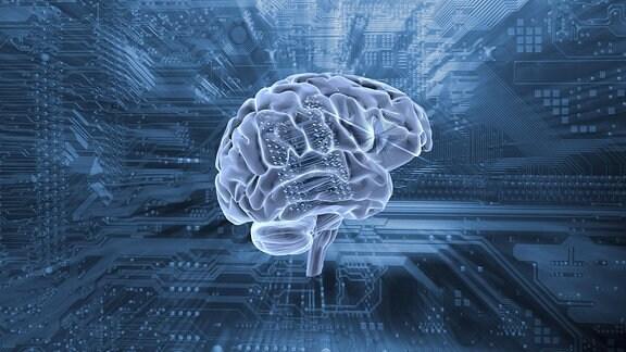 Grafik: Gehirn und im Hintergrund ein Computer Motherboard.