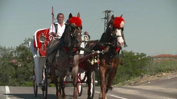 Pferdekutsche mit Kutscher