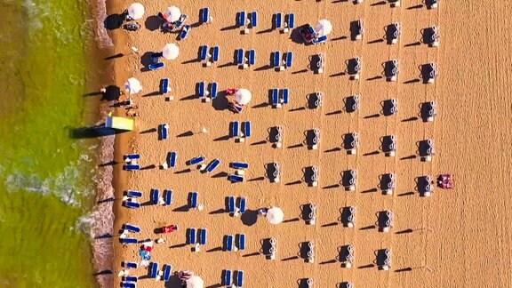 Strandliegen und Sonnenschirme am Sonnenstrand in der Draufsicht