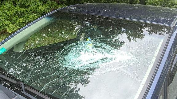 Eine zersprungene Autoscheibe