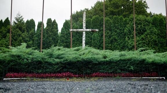 Inmitten von grünen Büschen steht ein Kreuz aus Birkenstämmen.