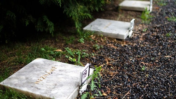 """Auf einer hellen Grabplatte steht in goldenen Lettern auf tschechisch """"Unbekannt""""."""