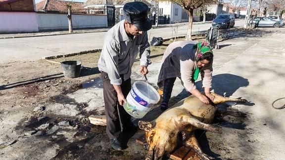 Hausschlachtung vor der Haustür in Rumänien