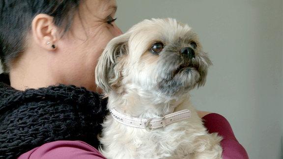 Hündin Debby auf dem Arm ihrer Besitzerin