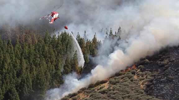 Feuer Gran Canaria, Hubschrauber löscht Waldbrand