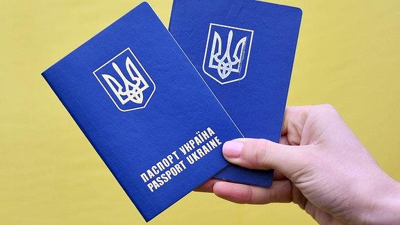 Zwei Reisepässe der Ukraine