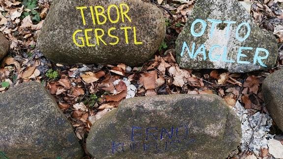 Steine mit Namen liegen auf dem Erdboden.