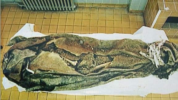 Auf dem Fußboden liegt teils verotteter Teppich mit Erde. Darin sind menschliche Knochen zu sehen.