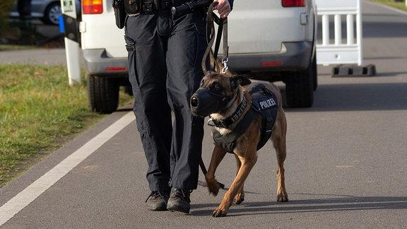 Polizeihund im Einsatz