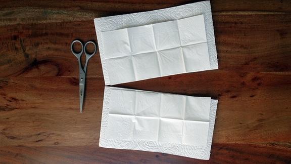 Zellstoff Masken Anleitung