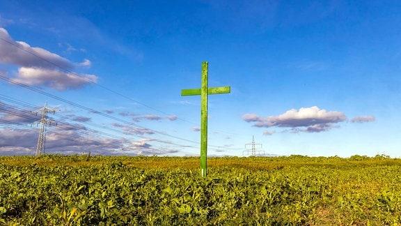Ein grünes Holzkreuz auf einem Feld.
