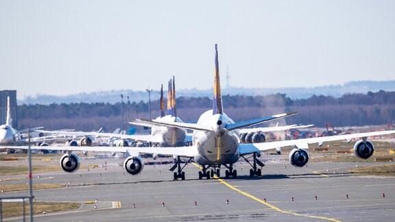 Lufthansa-Maschinen stehen in Reihe auf dem Rollfeld