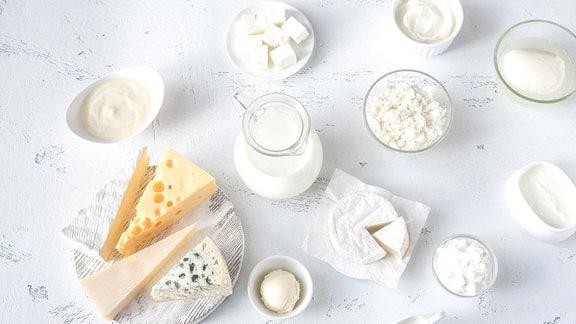 Verschiede Milchprodukte