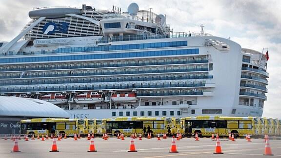 """Das Kreuzfahrtschiff """"Diamond Princess"""" im Hafen von Yokohama, Japan"""