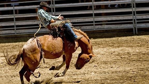 Reiter beim Rodeo