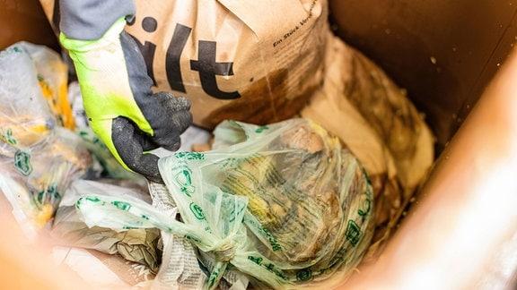 Eine Hand greift in eine Biomülltonne, in der eine Plastiktüte liegt
