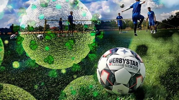 3D-Modell Coronavirus und Training des 1.FC Magdeburg.
