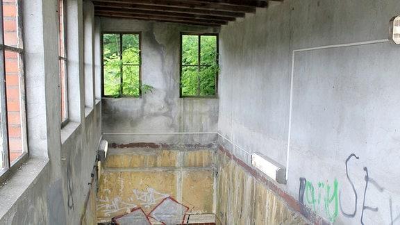 Blick die Treppe hinab in einen Personentunnel, durch die Fenster ragen Pflanzen.