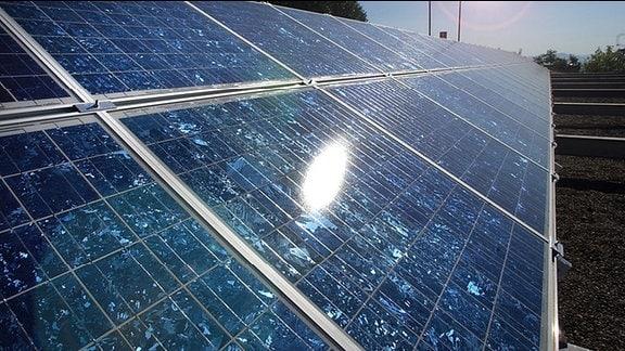 Die Sonne spiegelt sich in einem Solarpanel.