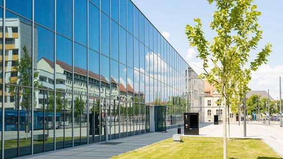 Neben der verspiegelten Fassade des Bauhaus Museums in Dessau-Roßlau stehen Bäume auf einer Grünfläche.