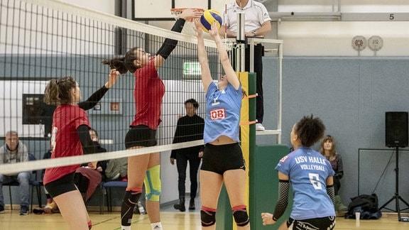 im Spiel der USV Halle Volleys vs. SG Rotation Prenzlauer Berg III