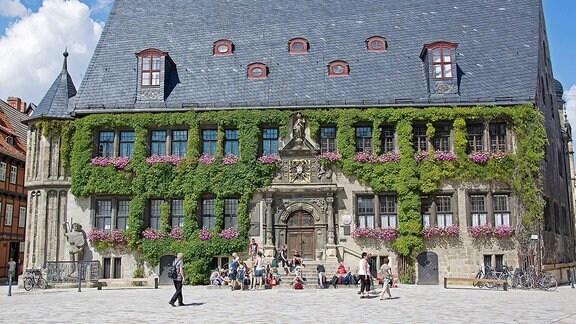 Rathaus mit Efeu und Statue in Quedlinburg.