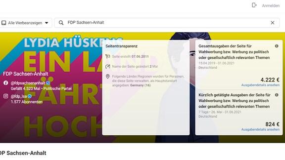Screenshot Statistik Wahlwerbung FB FDP Sachsen-Anhalt