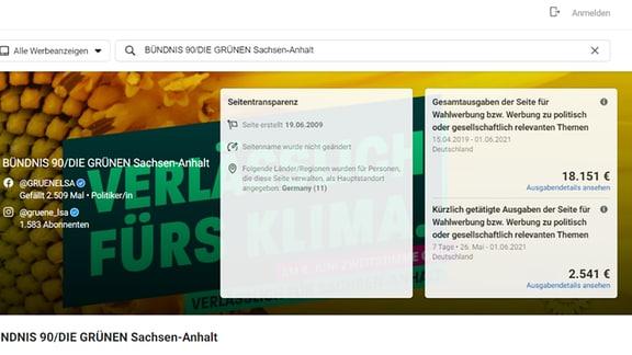 Screenshot Statistik Wahlwerbung FB Grüne Sachsen-Anhalt