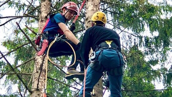 Die Bergwacht Harz trainiert in Thale für Baumrettungen.