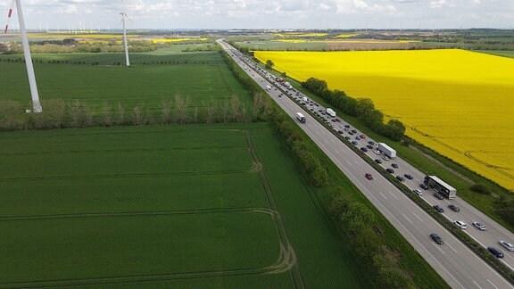 Stau und Stockender Verkehr bei Magdeburg – aus der Luft fotografiert mit blühenden Rapsfeldern neben der Autobahn