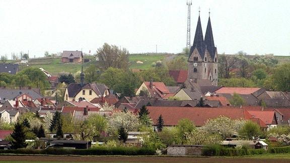 Türme der Klosterkirche St. Georg und Pancratius über den Dächern von Hecklingen