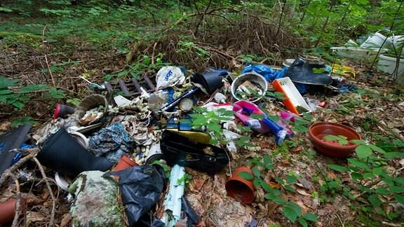 Illegal entsorgter Müll liegt in einem Wald (Symbolbild)