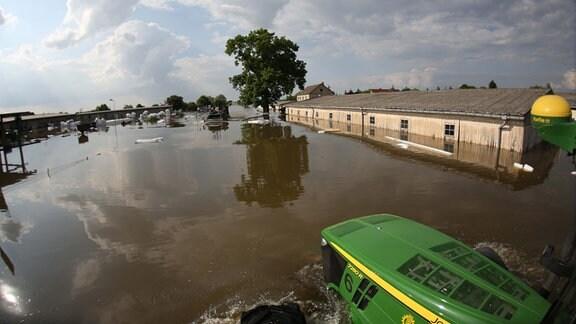 Bundeswehrkräfte mit Schwimmpanzern und Landwirte mit Traktoren evakuieren am 11.06.2013 Milchkühe aus dem vom Hochwasser eingeschlossenen Schönhausen (Sachsen-Anhalt).