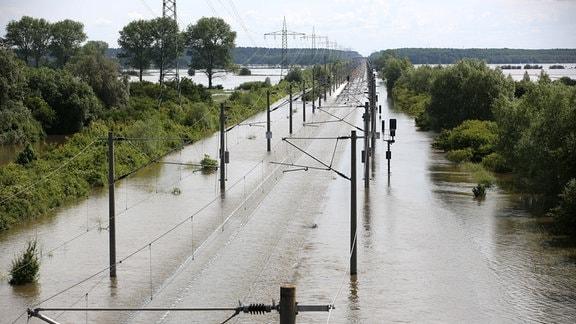 Die Bahntrasse bei Schönhausen (Sachsen-Anhalt) wird am 11.06.2013 vom Hochwasser der Elbe überspült.
