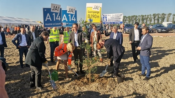 Mehrere Menschen pflanzen einen Baum
